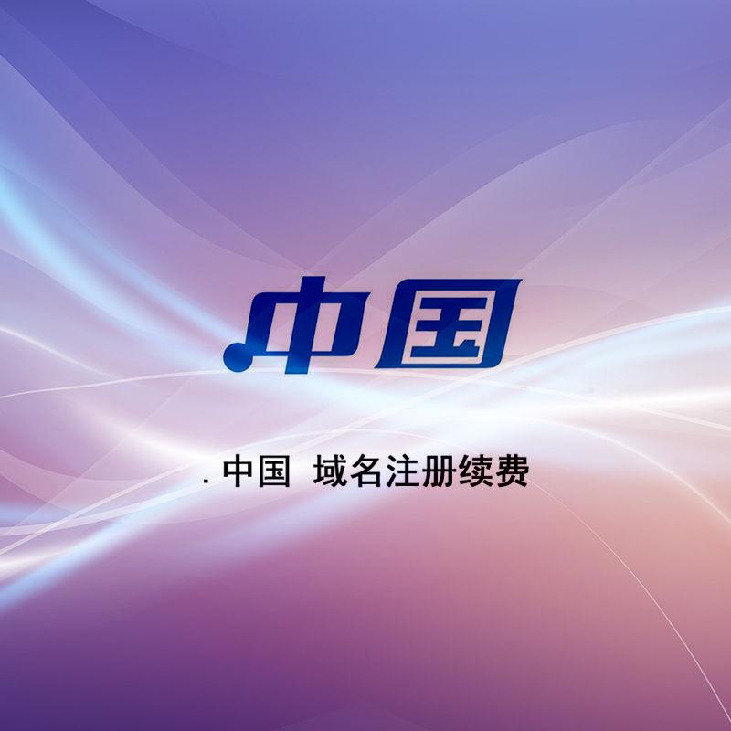 .中国 域名注册续费